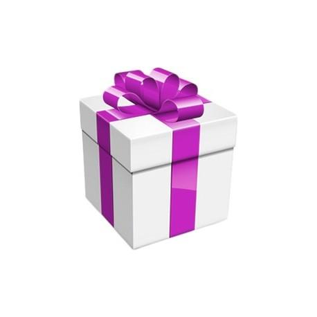 Cadeau offert pour 99€ d'achats