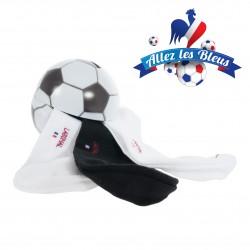 Coffret Labonal Tirelire Coupe du Monde - LABONAL 34810 6900