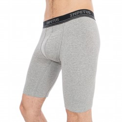 Boxer long Renergize gris - IMPETUS 1205G47-507